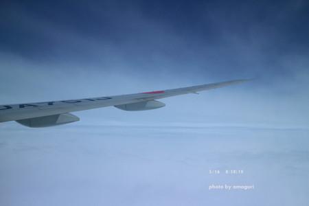 Img_0933amaguri